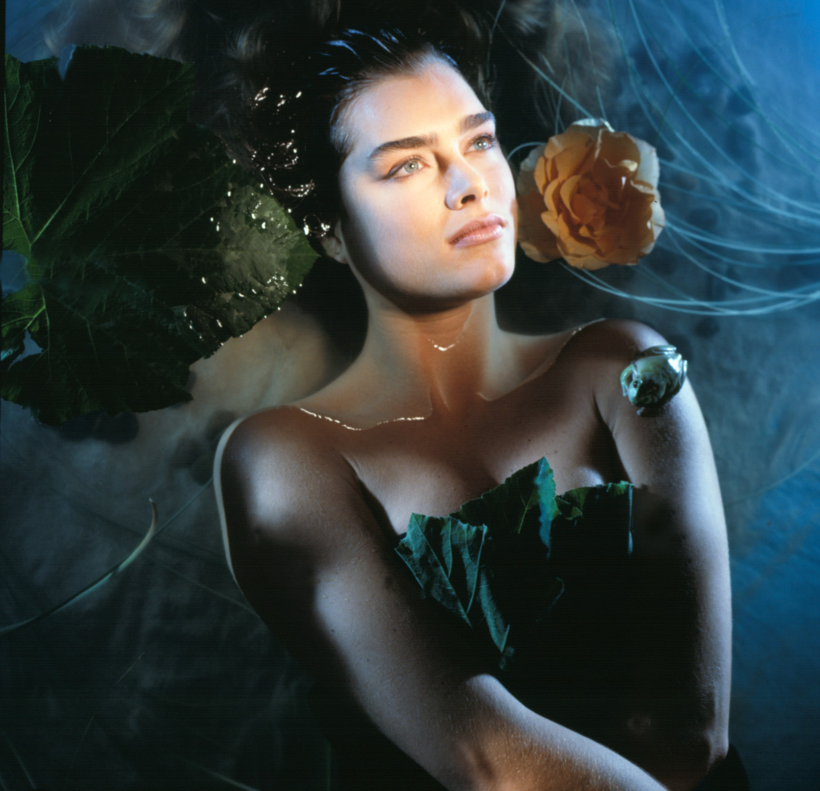 Brooke-Shields_Water-O_edit.jpg